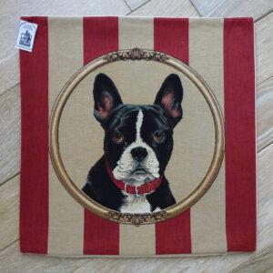 Coussin Chien Terrier de Boston -- 45x45cm-11417